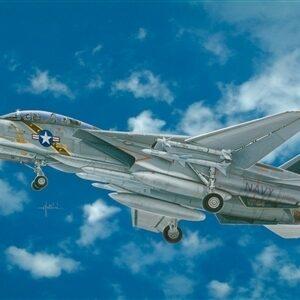 F-14A Tomcat 1/1