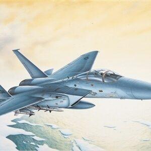 F-15C Eagle 1/1
