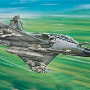 Mirage 2000 D 1/1